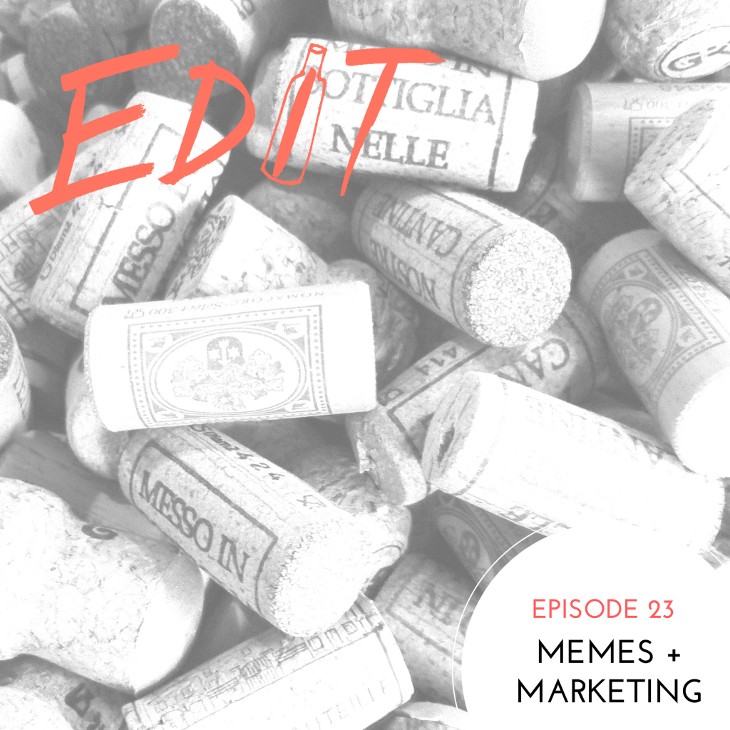 Episode 23 - Memes + Marketing
